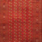Hand-knotted Shiravan Bokhara Red Wool Rug 7'1″ x 14'1″